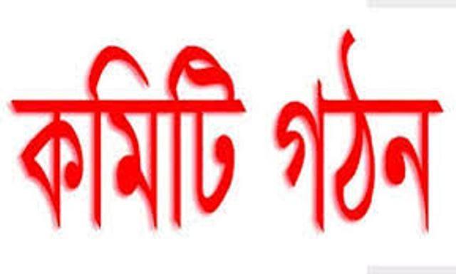 মহিপুর থানা ও কুয়াকাটা বিএনপির আহবায়ক কমিটি গঠন