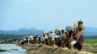রোহিঙ্গা ইস্যু; মিয়ানমারের পক্ষ ছাড়লো নয় দেশ