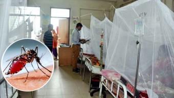 করোনার মধ্যেই ডেঙ্গুর হানা: একদিনে ৭০ রোগী শনাক্ত