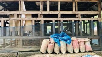 বরিশালে ঠিকাদারের খামখেয়ালিতে মুরগির ফার্মে পাঠদানের প্রস্তুতি