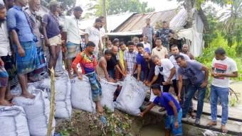 বানারীপাড়ায় নদী ভাঙ্গন রোধেতরিৎ ব্যবস্থা এমপি শাহে আলমের